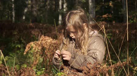 cesty : Child in Forest Walking on Log, Kid Playing in forest, Girl Outdoor Wood Dostupné videozáznamy
