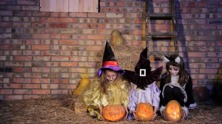 ведьма : Three girls and a boy in Halloween costumes bring pumpkins and sit down.