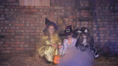 ведьма : Three little Halloween witches casting with pumpkins.