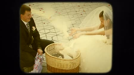 gołąbki : This is a shot of young happy groom and bride sitting on hunkers and pick up a cloth off the basket with white pigeons and release them with happy and excited expression of their faces. Retro. Wideo