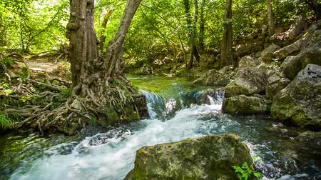 natural tranquil : Picturesque scenery - mountain river peacefully flowing and raging in green forest among trees and rocks scattered by sides. Tranquil relaxing scene captured in the Crimea. Stock Footage