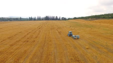 hay pile : This is an aerial rear shot over stubble field of golden color with light blue rural tractor baler slowly moving during collecting hay making bales. Hilly terrain with greenery and cloudscape of background. Stock Footage
