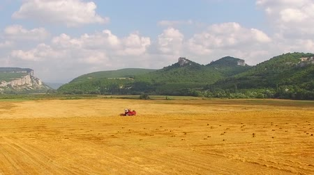 termés : In the frame there is a beautiful place - hilly terrain with greenery and bright yellow field with one combine harvester working on it leaving stripes of hay behind. Aerial view. Stock mozgókép