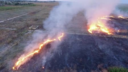 sucho : SLOW MO: This is an aerial shot over field with dry grass burning in a large area of steppe producing strong smoke because of the negligence with fire of people living around.