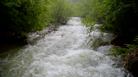 поток : Rapid River Flow Rushing Down In Green Forest