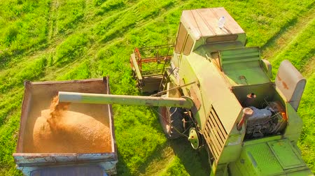 trator : AERIAL VIEW. Harvester Loading Grain Of Wheat In Tractor Trailer