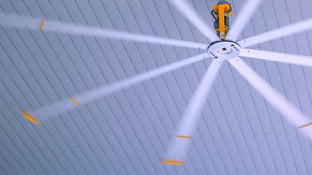 maior : The giant fan spins in the buildings ceiling