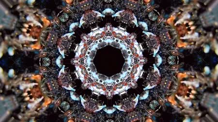 tons : Kaleidoscope effect tone. The black ants move and bring the eggs to a safe place with abstract background