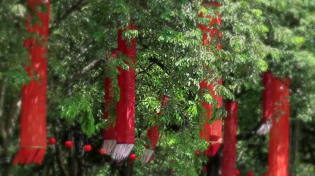 lanscape : Chinese New Year Lantern in the form of a long cloth decorated on a tree to celebrate Chinese New Year Stock Footage