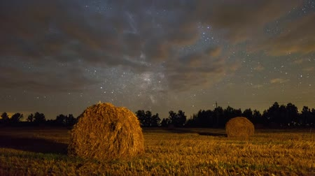 estrela : Autumn field under stars