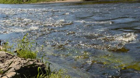 00:00 | 00:00 1× A river flows over rocks in the forest. River bank. National park Stock Footage