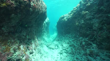 fenda : Moving underwater into a crevice in the seabed on the outer reef, Huahine island, south Pacific ocean, French Polynesia