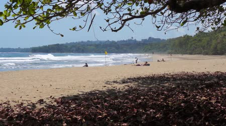 limon : Tropical beach in the Caribbean side of Costa Rica, playa Cocles, Puerto Viejo de Talamanca, 50fps