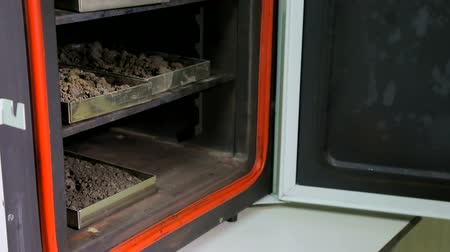 talaj : Laboratory puts soil samples in the oven Stock mozgókép