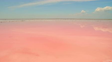 sůl : Aerial view of salt sea water evaporation ponds with pink plankton colour