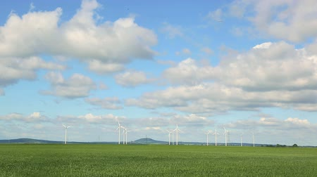 west wing : Poland wind energy. Landscape with windmills and blooming Wheat field Stock Footage