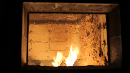 briquettes : Alternative fuel. Pallets are burnt in an industrial boiler. Modern wood burning boiler.