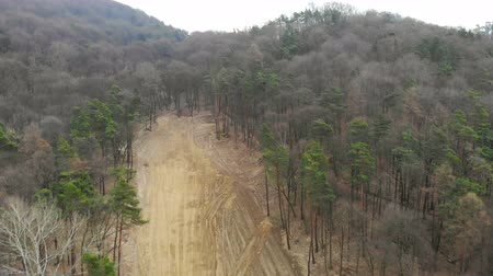 borneo : Aerial view of deforestation. Flying over a site of cut down trees Stock Footage