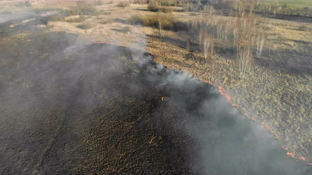 neobdělávaný : Large-scale fires. Burning grass and trees in a large area.