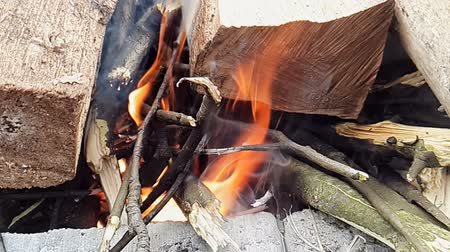 ardente : Super slow motion burn fire from wood in forest.