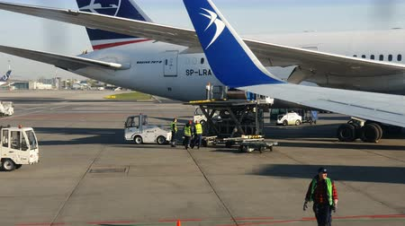 搭乗 : Poland. Warsaw. April 20, 2019. Unloading aircraft Polish airlines LOT. A group of workers unload the plane in a knapsack 動画素材