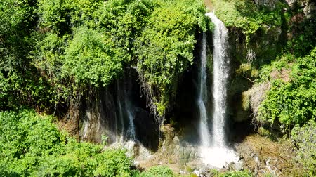 manaus : Magnificent waterfall in Sunny weather in Tivoli wildlife Park, Italy. Stock Footage