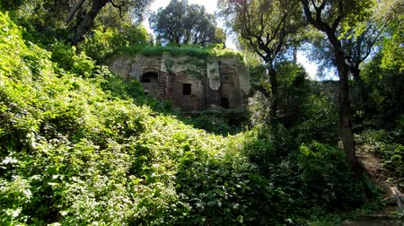 musgo : Ancient ruins in a wildlife Park, in Tivoli, Italy