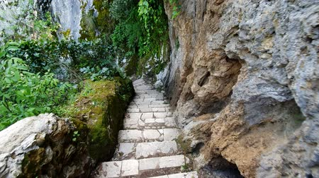 lesiklás : Descending the stairs along the cliff in the wildlife Park. First person view. Walk in the wild