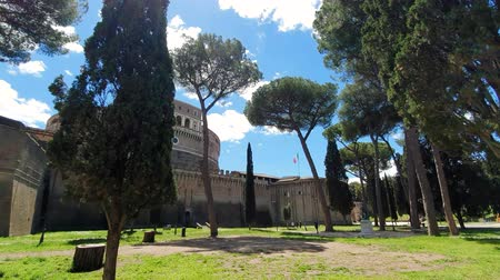 Pine Park near the castle of St. Angelo in Rome Italy