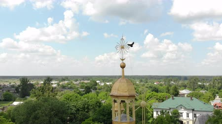 Flying over the dome of the Church. The bird sits on the cross of the Church