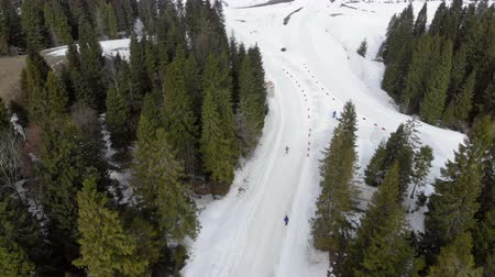 narciarz : Aerial view Biathlon. Athletes students participating in local competitions. Passage of distance group of athletes in the mountains.