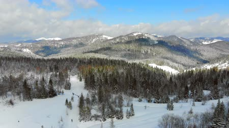 Panorama of the mountain range with trees covered with snow in Sunny weather. Winter view of the Carpathian mountains