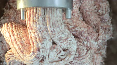 wołowina : Large industrial meat grinder, grinds the meat into minced meat. Pieces of minced meat come out of the grinder. Wideo