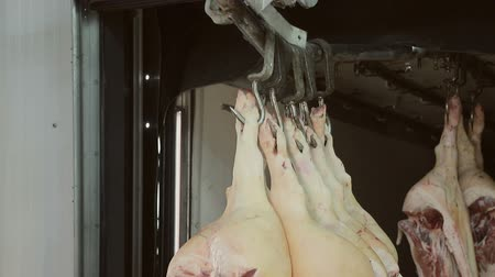 ветчина : Close - up of a pig carcass that hangs on a hook, gets into the refrigerator on special flights.