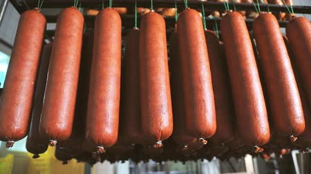smoked : Sausage which is suspended on the shelves, dries in the storage room. Panorama of the sausage which is suspended on laces in the refrigerator. Stock Footage