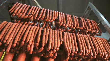 bakkaliye : Hunting sausages close - up which is suspended on the shelves, dries in the storage room. Panorama of the sausage which is suspended on laces in the refrigerator. Stok Video