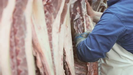 ветчина : Worker cuts pieces of meat from the carcass of a pig for further deboning of pork Стоковые видеозаписи