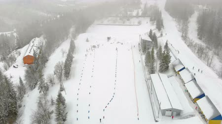 narciarz : Aerial view Biathlon. Winter sports in the mountains. Cross country skiing in the Ukrainian Carpathians