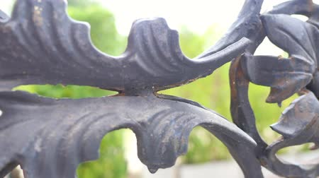 сосредоточиться на переднем плане : Close-up of dark metal flower decorative wrought iron fence in moving shot, outdoor shooting in natural summer daylight. Design, garden and pattern concepts.