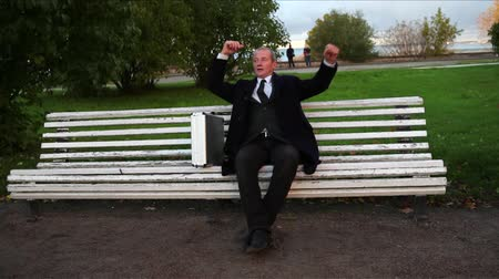 suit and tie : Senior Businessman Relaxing on Bench in Park Dolly Shot Stock Footage