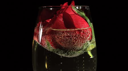 bordas : Close up of Red Rose with Champagne Glass Vídeos