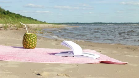 Pineapple juice and open book at the summer beach