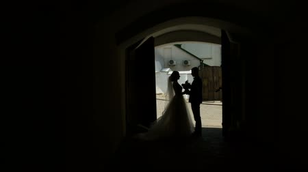 silhouettes of the bride and groom on the background of the arch