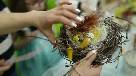 Children make a nest for birds, nest for birds Стоковые видеозаписи