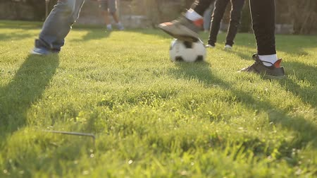 futball labda : Children playing soccer with a ball on the grass