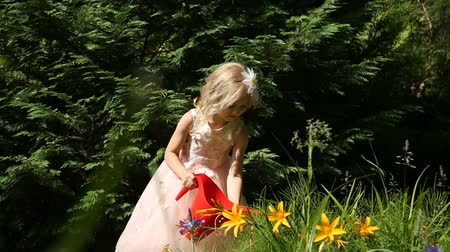 jardinero : Little girl watering flowers in the garden Archivo de Video