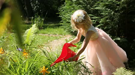 kutuları : Little girl watering flowers in a garden from a watering can Stok Video
