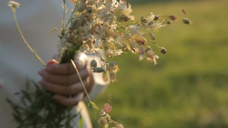 lupine : Girl holding wild flowers in hands Stock Footage