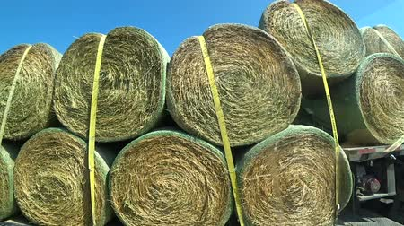 bales : Transportation of rolls of hay on the truck
