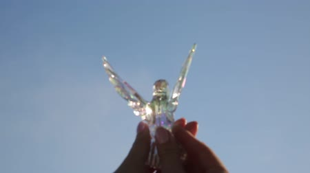 yanılsama : Bird of glass in the hands of a girl Stok Video